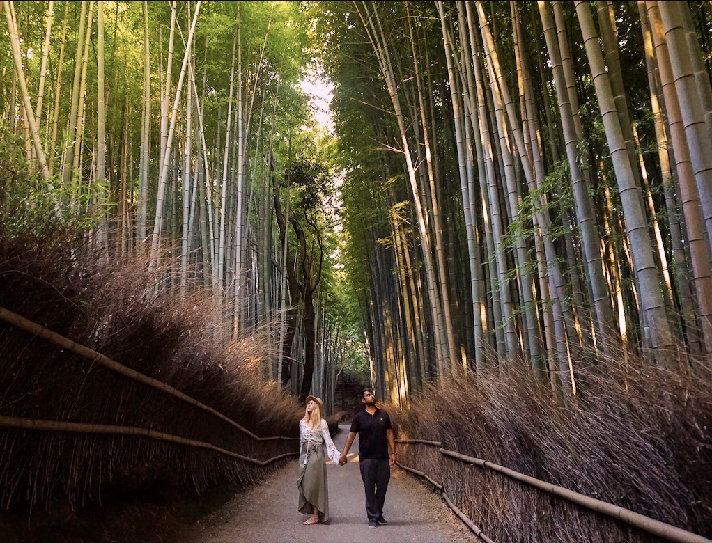 Woman and man standing in the middle of a pathway surrounded by tall stalks of bamboo.