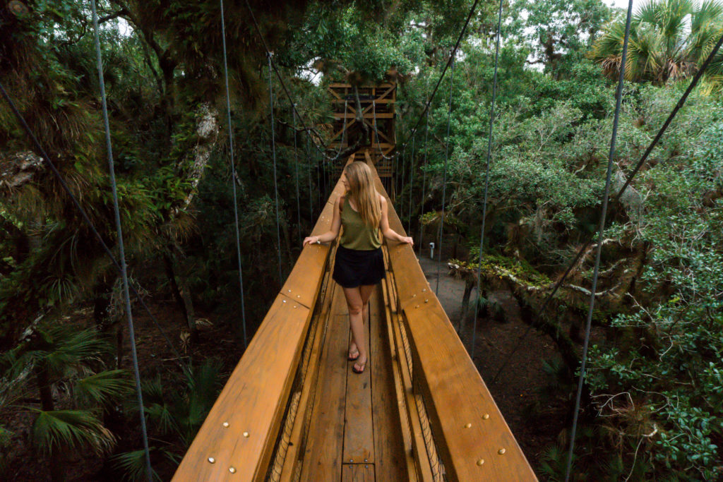 Myakka State Park | Sarasota | Florida | Pages of Travel