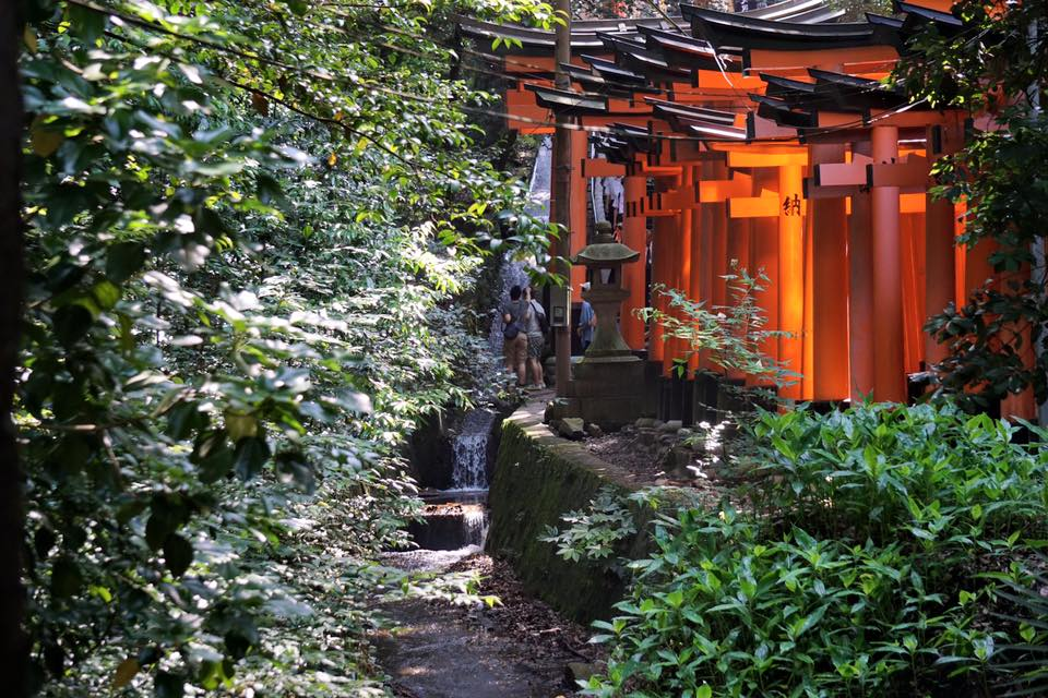 Path leading up to Fushimi Inari