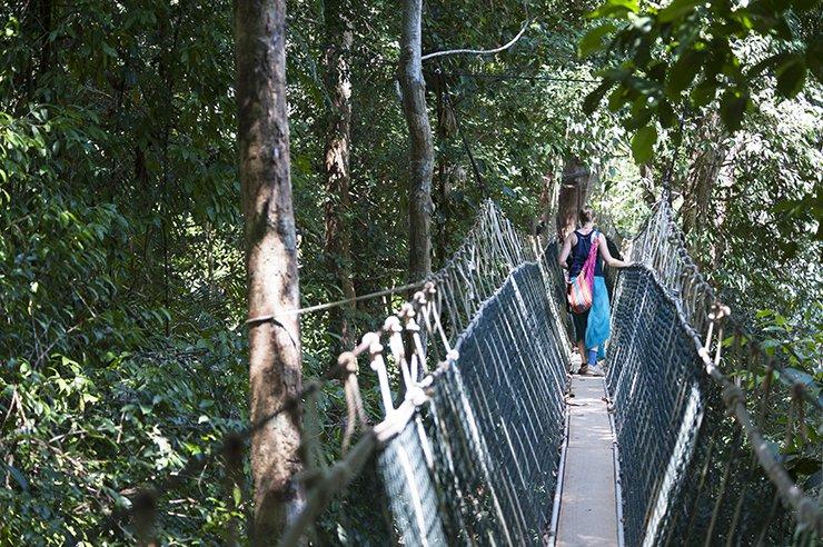 Taman Rope Bridge - The Crowded Planet