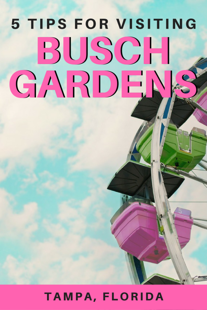 Busch Gardens in Tampa, Florida is an amusement park that has many thrilling rides, exciting shows, and even zoo attractions! Here are some tips to make the most of your experience at Busch Gardens.