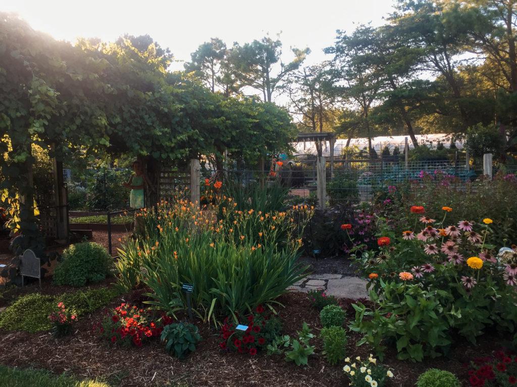 Botanical Gardens of the Ozarks in Fayetteville, Arkansas