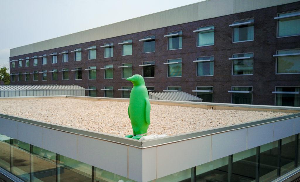 Penguin at 21c Museum Hotel Bentonville