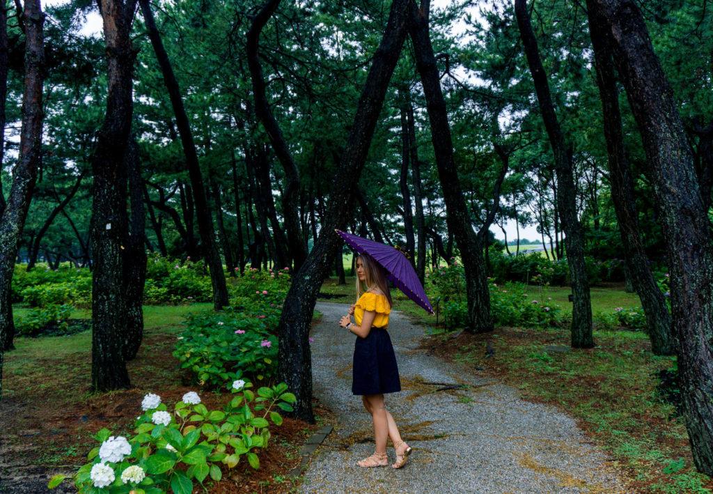 Woman walking down a paved path holding a purple umbrella (Location Uminonakamichi Seaside Park - Fukuoka)