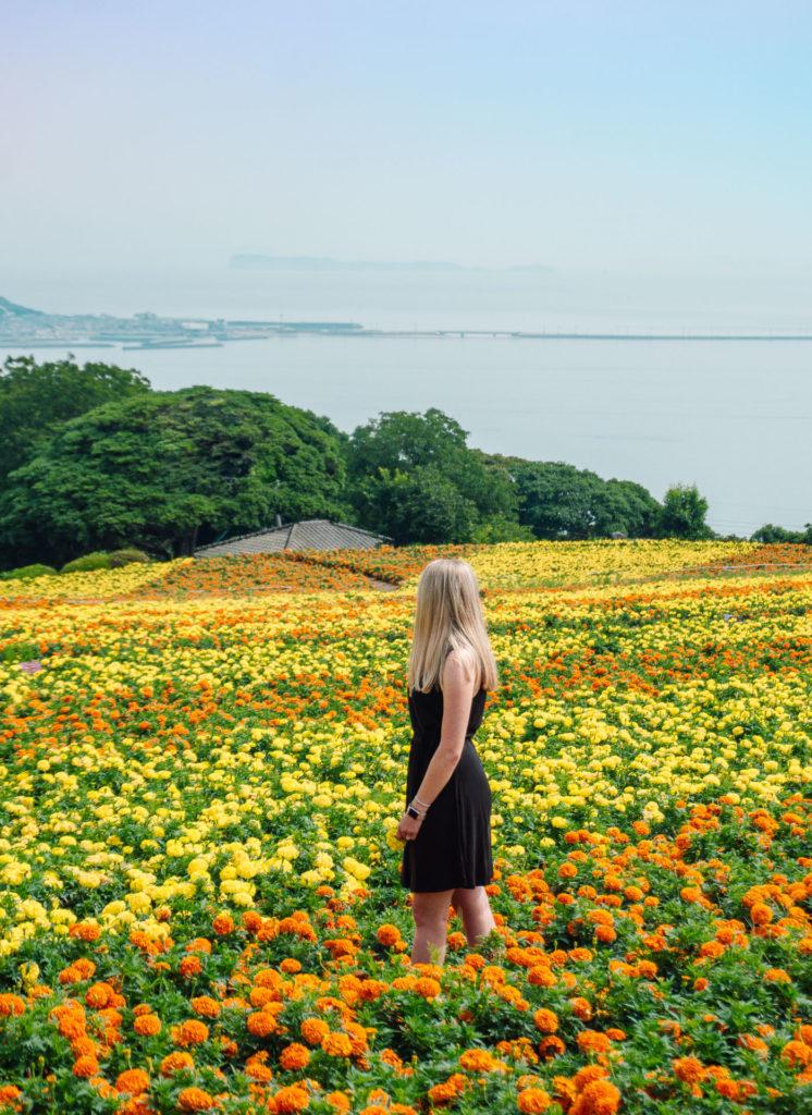 Woman standing in a field of yellow and orange flowers overlooking the ocean at Nokonoshima Island in Fukuoka, Japan