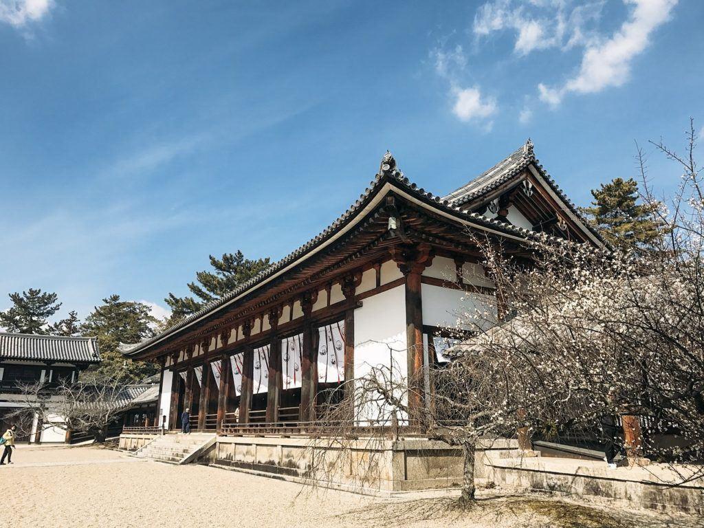 Horyuji Temple from a side angle (Nara, Japan)