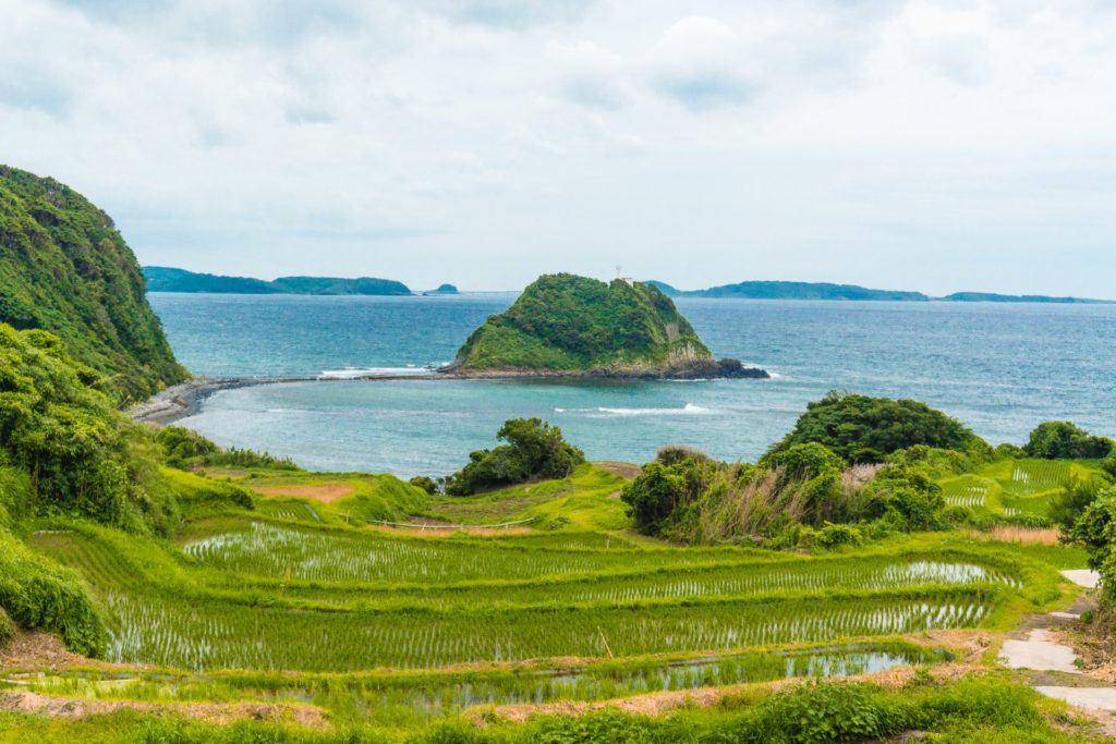 Tawarajima Rice Fields