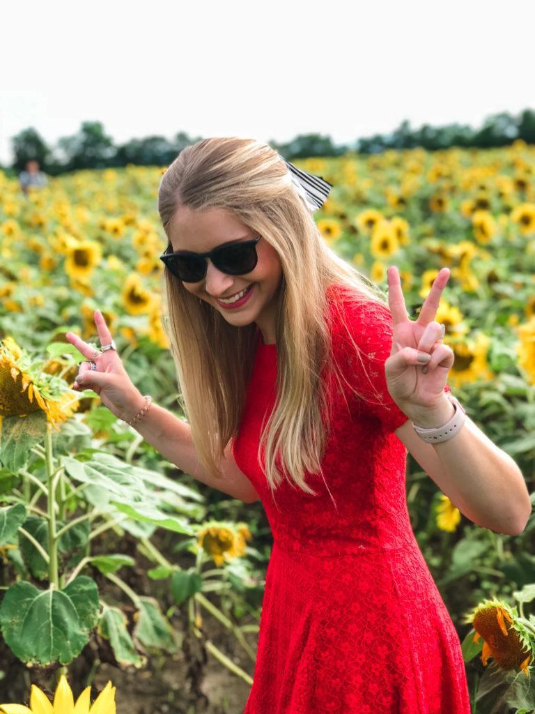 Hokuryu Sunflower Park in Hokkaido, Japan