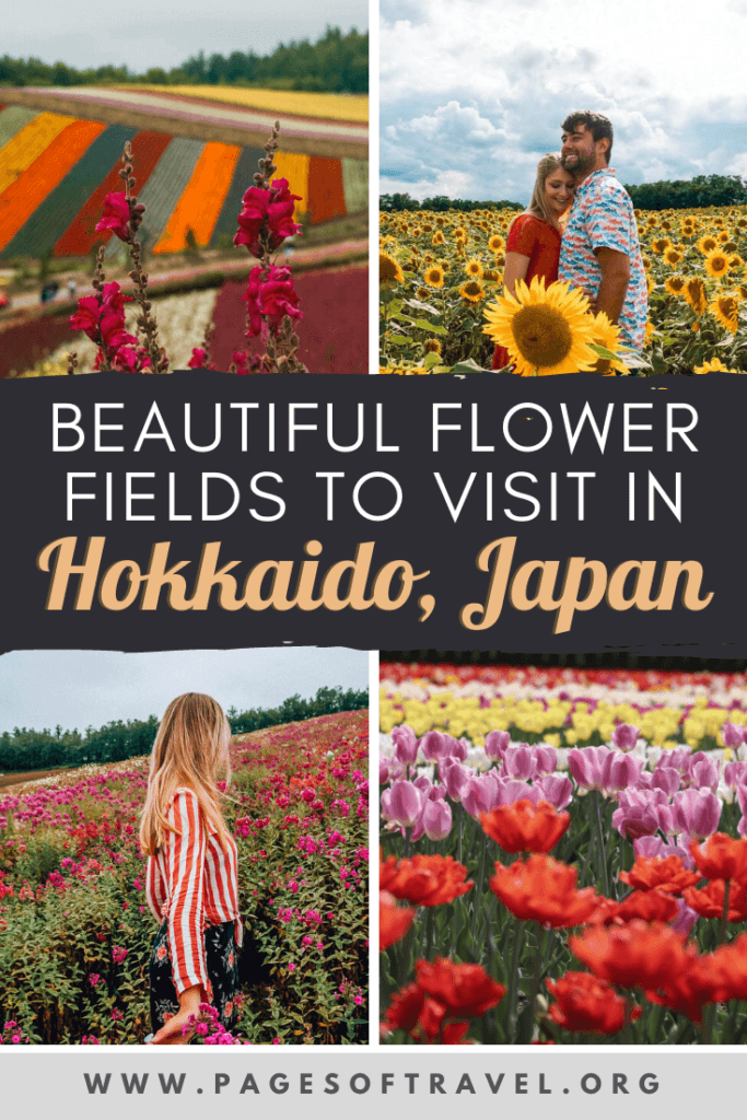 Hokkaido is a popular destination in Japan that many people visit during the winter for snow sports such as skiing, dog sledding, or snowboarding. But Hokkaido is also a wonderful place to visit during the summer for cooler temperatures, hiking in national parks, and the breathtaking flower fields. Let's take a journey to some of the most popular Hokkaido flower fields, how to get there, and when to visit! Hokkaido | Flower Fields | Japan Travel | Summer in Japan | Hokkaido Flowers