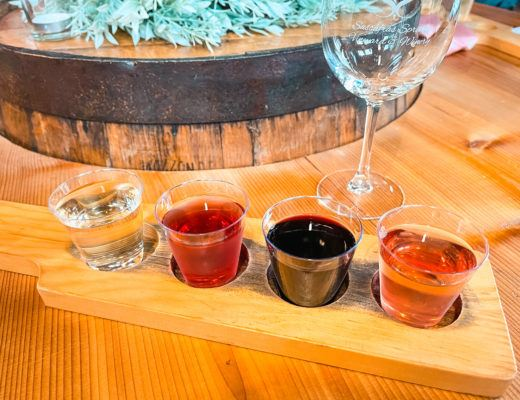 Wine flight with four small glasses of wine from Sassafrass Winery in Northwest Arkansas